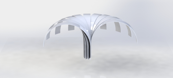 canopy 1.JPG